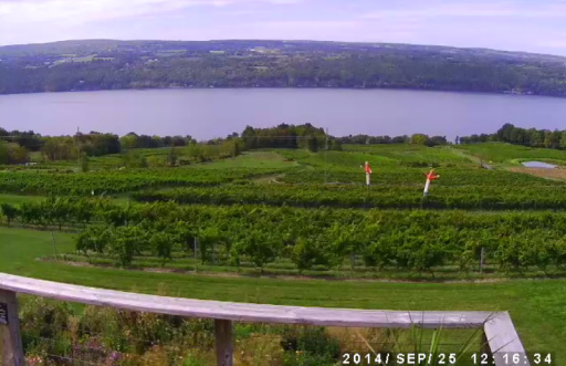 Our View Of Seneca Lake, NY