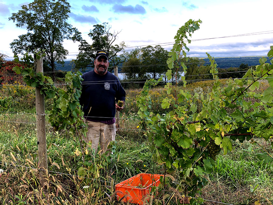 Vineyard worker Mike Betts in the vineyard with the lake behind him.