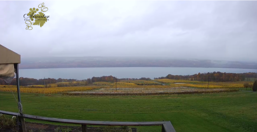 Picture of Atwater Vineyards looking from the tasting room to the lake.